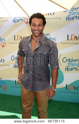 LOS ANGELES - JUN 14:  Corbin Bleu at the Children Mending Hearts 6th Annual Fundraiser at Private Estate on June 14, 2014 in Beverly Hills, CA