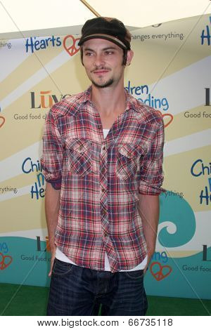 LOS ANGELES - JUN 14:  Shiloh Fernandez at the Children Mending Hearts 6th Annual Fundraiser at Private Estate on June 14, 2014 in Beverly Hills, CA