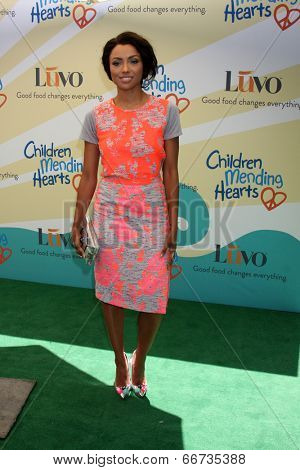LOS ANGELES - JUN 14:  Kat Graham at the Children Mending Hearts 6th Annual Fundraiser at Private Estate on June 14, 2014 in Beverly Hills, CA