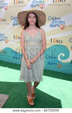 LOS ANGELES - JUN 14:  Merit Leighton at the Children Mending Hearts 6th Annual Fundraiser at Private Estate on June 14, 2014 in Beverly Hills, CA