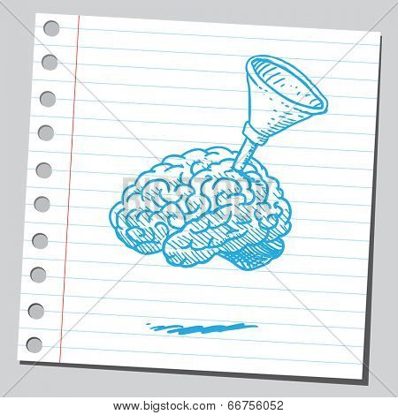 Brain with funnel