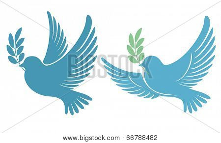 Dove with an olive branch - symbol of peace and hope