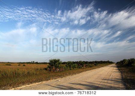 Turner River Road Florida Everglades