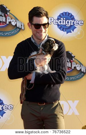 LOS ANGELES - NOV 22:  Max Greenfield at the FOX's