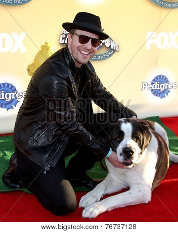LOS ANGELES - NOV 22:  Gavin DeGraw at the FOX's