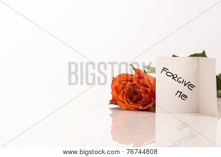 Small Forgive Me Card Beside Orange Rose