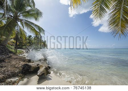 Idealic Caribbean Coastline With Splash