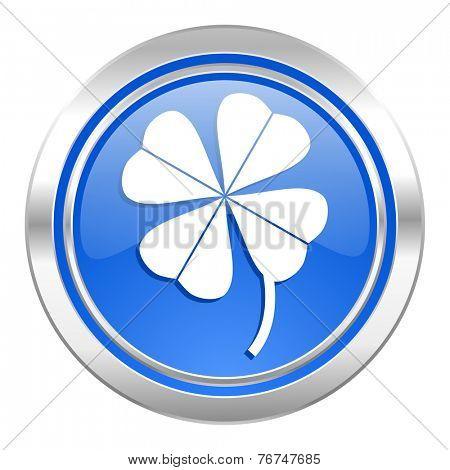 four-leaf clover icon, blue button
