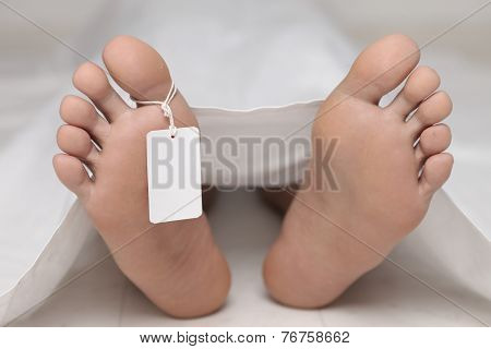 dead body at a morgue