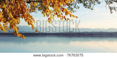 View Through Autumnal Leaves - Starnberg Lake And Zugspitze