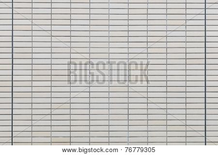 Brick Wall With Plant Background