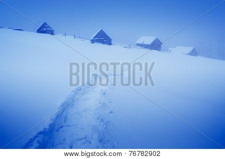 Evening landscape. Trail in the snow. Winter in the mountain village. Carpathians, Ukraine