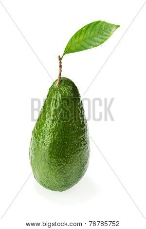Ripe Green Avocado With Leaves Isolated On White Background.