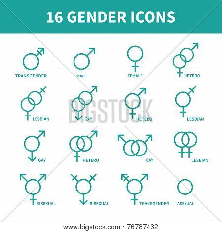 Sexual orientation gender web icons,symbol,sign in flat style. Male and female combination. Graphic