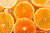 picture of sweetie  - Oranges and sweetie close up - JPG