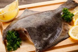 image of flounder  - Fresh raw flounder on cutting board - JPG