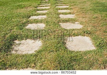 Garden Path Across Grass
