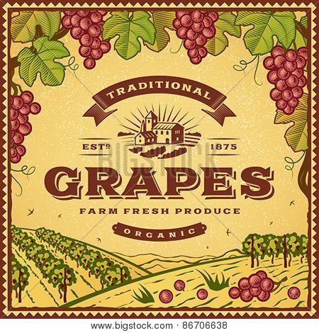Vintage grapes label. Editable EPS10 vector illustration with clipping mask and transparency.