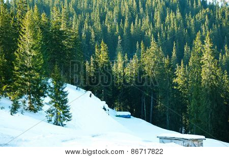 Beautiful view of Carpathian Mountains in wintertime