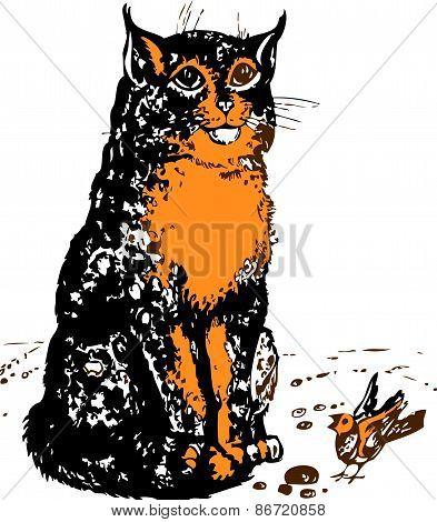 Dappled cat