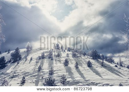 Hill Covered With Snow
