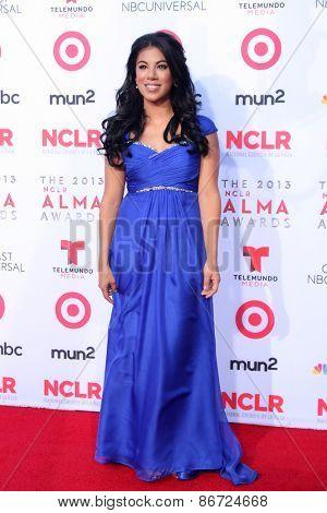 LOS ANGELES - SEP 27:  Chrissie Fit at the 2013 ALMA Awards - Arrivals at Pasadena Civic Auditorium on September 27, 2013 in Pasadena, CA