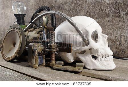 Mechanical skull.