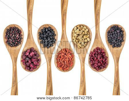 healthy dried berry collection (blueberry, mulberry, cherry, goji, elderberry, chokeberry, cranberry) on isolated wooden spoons, top view