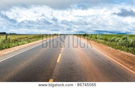 Road on a remote area in Brazil