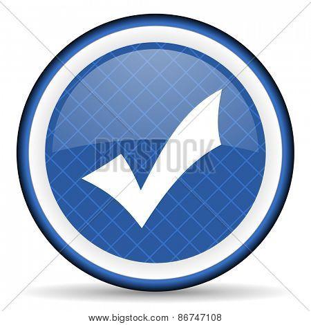 accept blue icon check sign