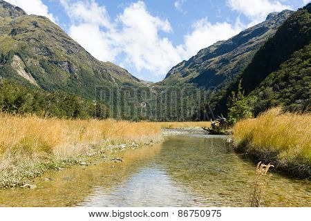 Stream through back country valley, lined by valleygrasses and surrounded by Southern Alps on the Ro