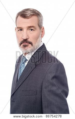 Handsome Aged Businessman