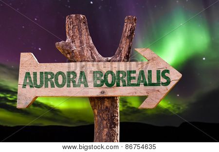 Aurora Borealis wooden direction sign