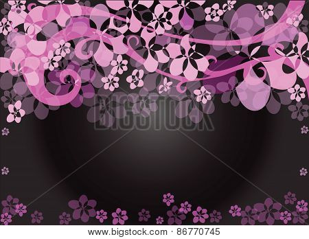Flower Pink Background Black