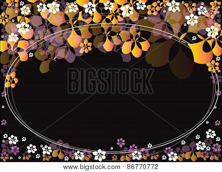Flower Yellow Pink Background Black