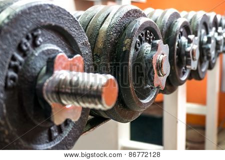 Line Of Dumbbells In The Gym