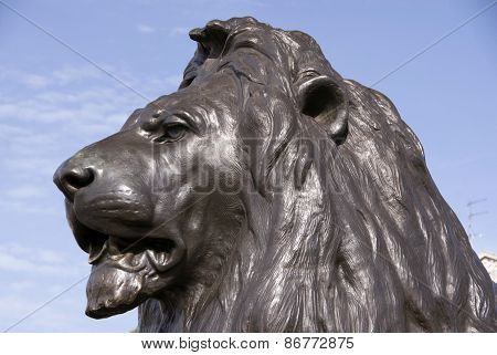 Lion Statue,  Trafalgar Square, London