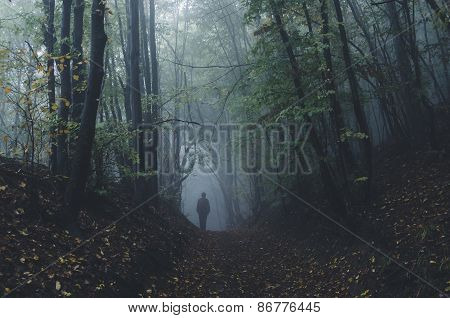 Man in dark mysterious haunted forest on Halloween
