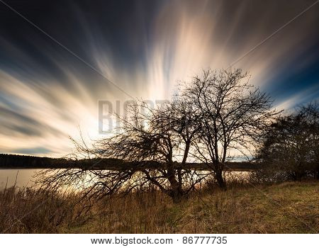 Long Exposure Black And White Landscape Of Moving Clouds Over Withered Tree
