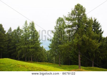 Hang glider flying in the mountains in Slovenia