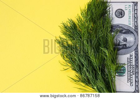 Greenery dill and 100 dollars on yellow background, copy space, horizontal