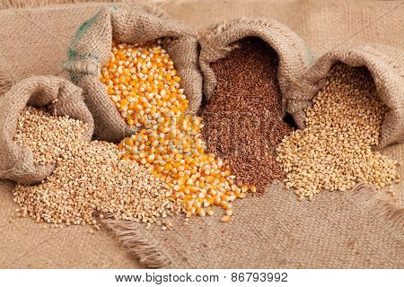 Organic Seeds:  Buckwheat, Corn Flax And Wheat In Yute Sack