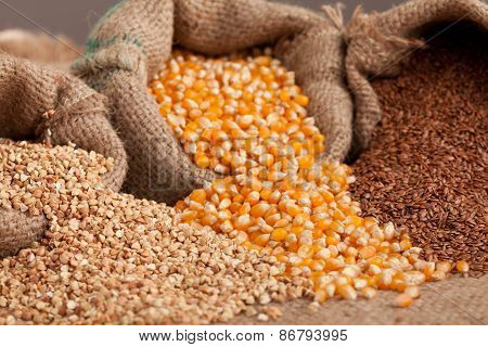 Organik Food:  Buckwheat, Corn And Flax In Yute Sack