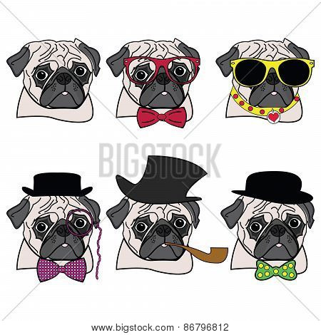 Pugs hipsters