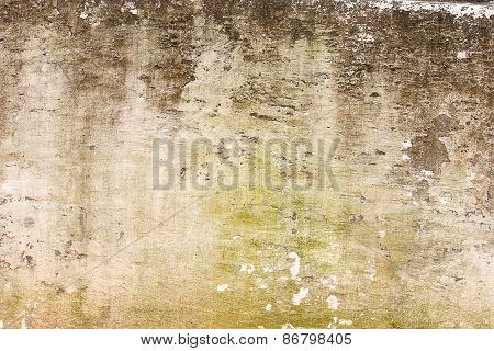 Image Of The Stain On The Wall