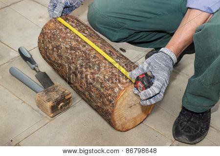Master Measures The Length Billet Of Logs