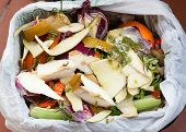 image of decomposition  - Organic waste for compost with vegetables fruits and varied food - JPG