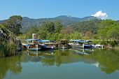 stock photo of dalyan  - Dalyan river Turkey. Several tourist boats are near the riverside. Green trees mountains and sky are reflect in water.