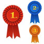 image of winner  - Winner Rosette Set with Ribbons - JPG
