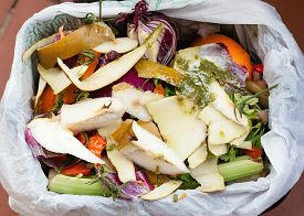 foto of decomposition  - Organic waste for compost with vegetables fruits and varied food - JPG